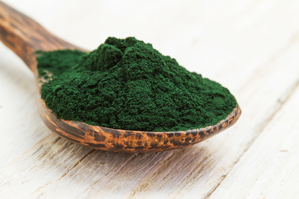 Spirulina Powder on Spoon